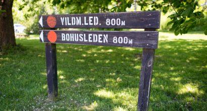 Vildmarks- & Bohusleden